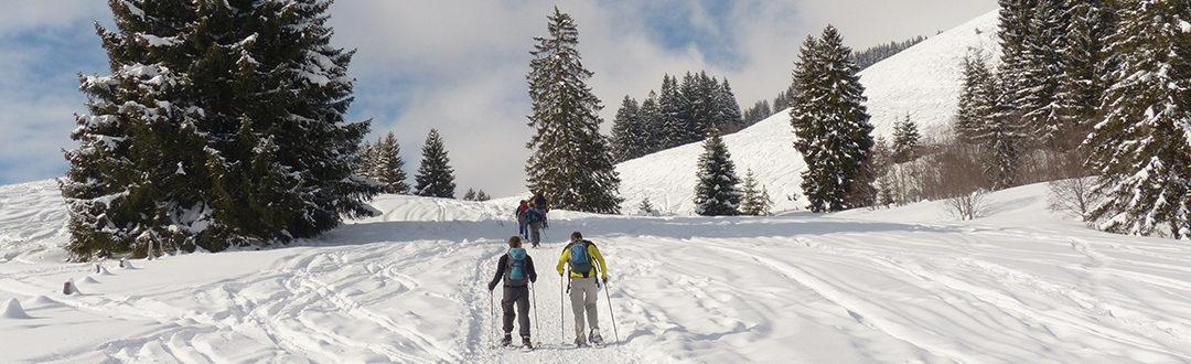 Qu'est-ce que le ski fitness et pourquoi le pratiquer